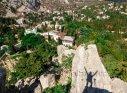 Крым, Симеиз, можжевеловая роща