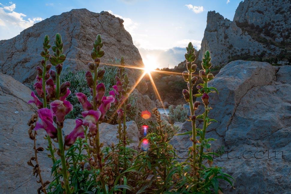 Крым, Симеиз, гора Кошка, закат