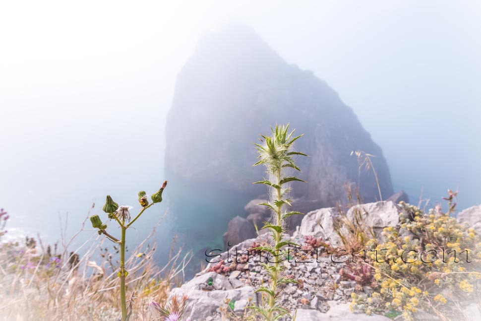 Крым, Симеиз, скала Дива в тумане